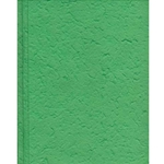 Heavyweight Mulberry Paper Pack - GRASS GREEN