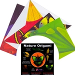 Nature Origami Kit - INSECTS