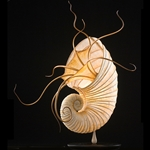 Ammonite Sculptural Lamp