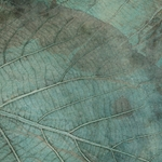 Mulberry Paper with Teak Leaves - TEAL