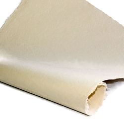 Indian Cotton Paper - Solid - IVORY